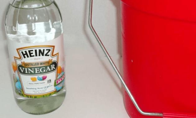 white vinegar floor cleaner