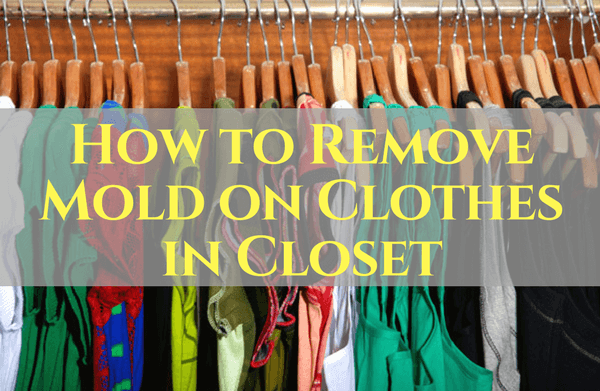 How To Remove Mold On Clothes In Closet