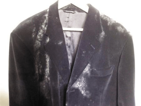 3 Tips On How To Get Rid Of Mold On Clothes In Closet