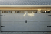 Garage door panel with windows