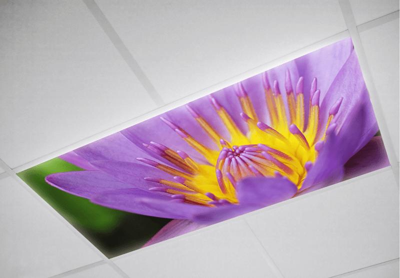 Flower Fluorescent light covers