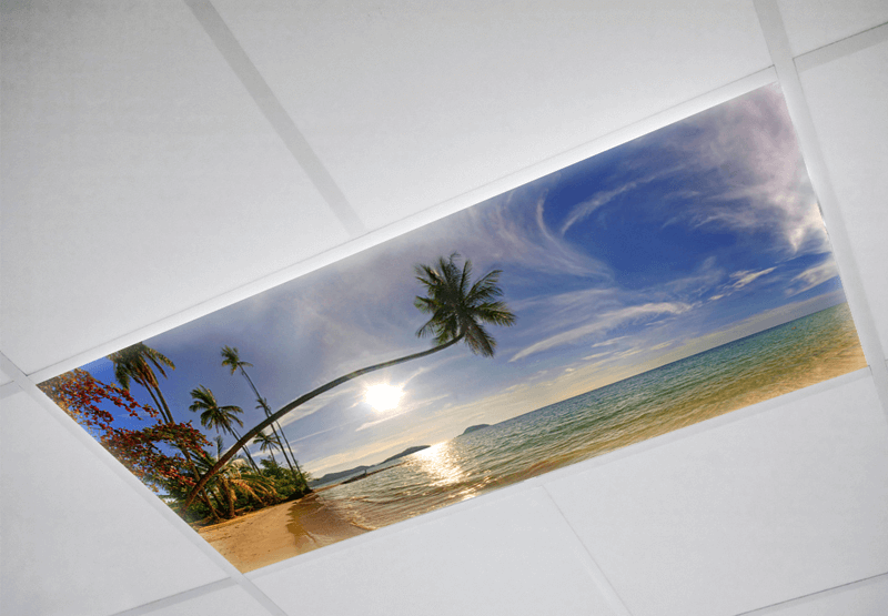 Landscaper Fluorescent light covers