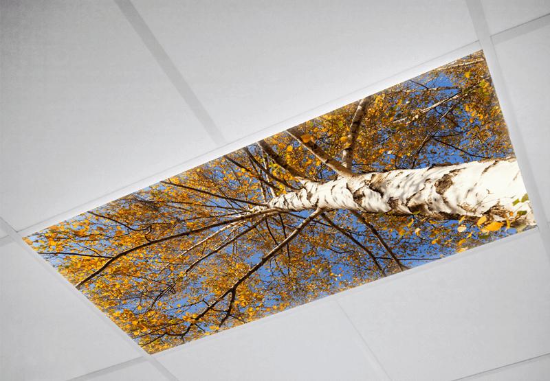 Tree Fluorescent light covers