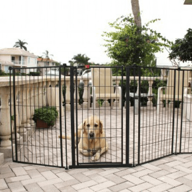 Pet gate for porch