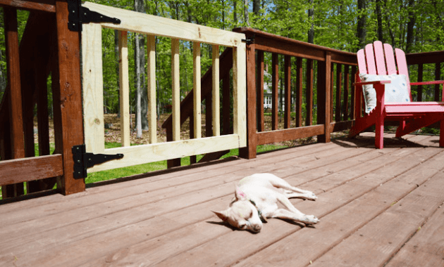 Porch Gate for Dogs