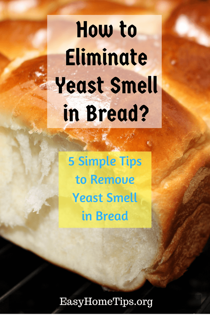 4 Simple Tips to Eliminate Yeast Smell in Bread