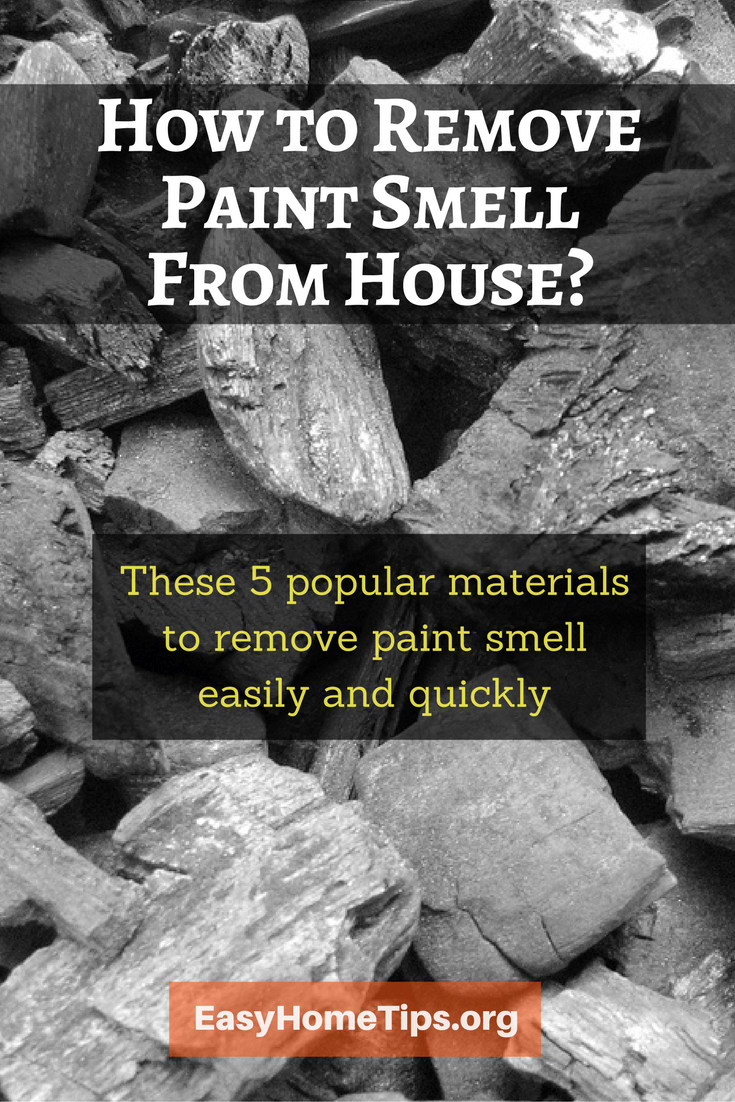 5 Popular Materials to Remove Paint Smell From House