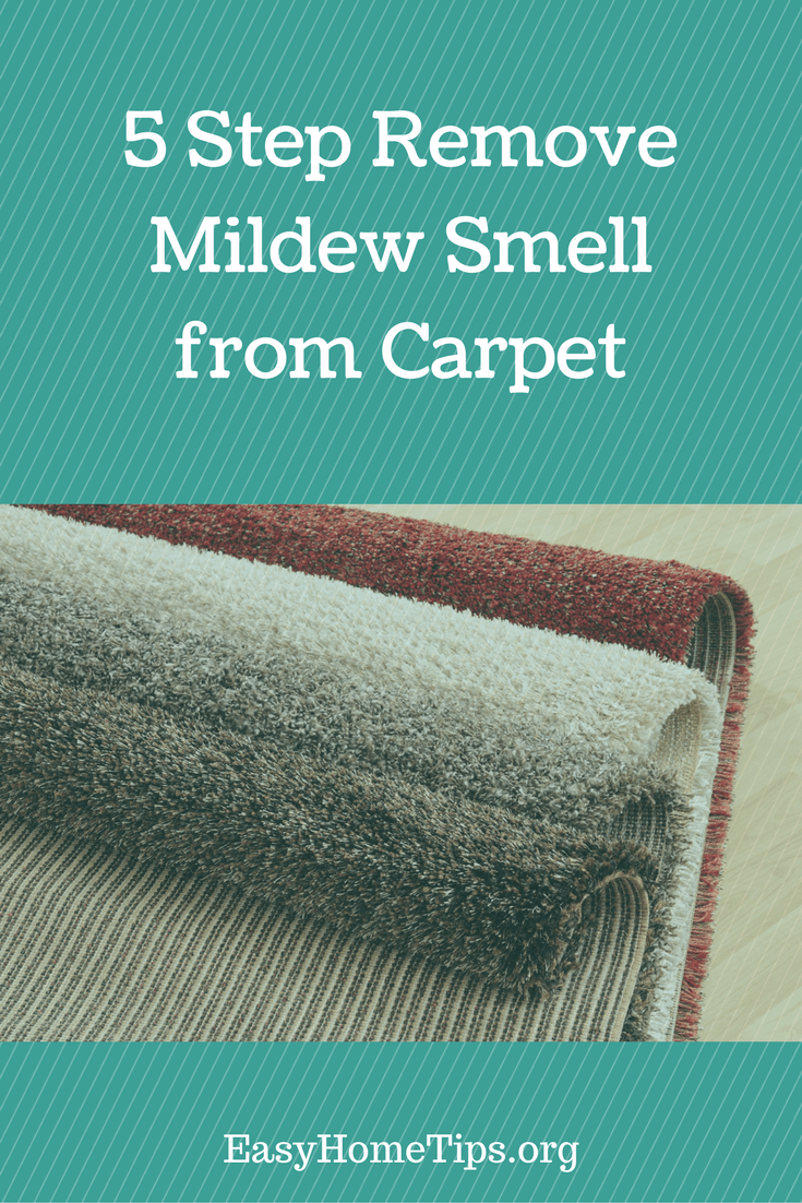 5 Step Remove Mildew Smell from Carpet
