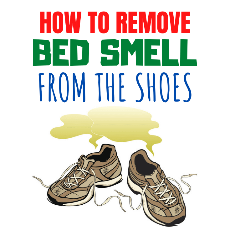 HOW TO REMOVE BED SMELL FROM THE SHOES