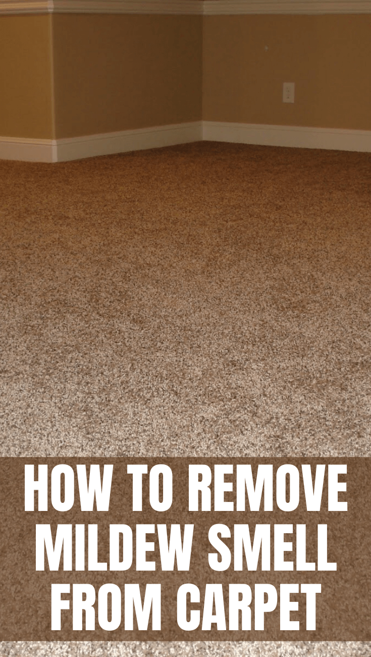 HOW TO REMOVE MILDEW SMELL FROM CARPET