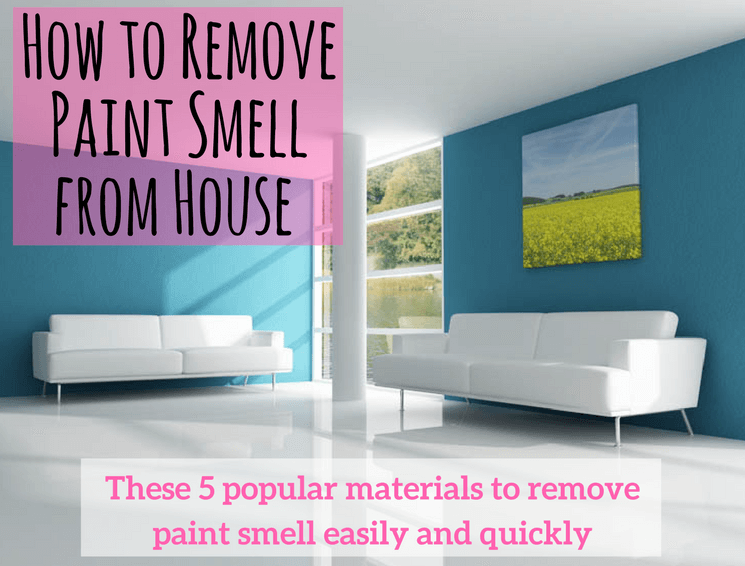How to Remove Paint Smell From House