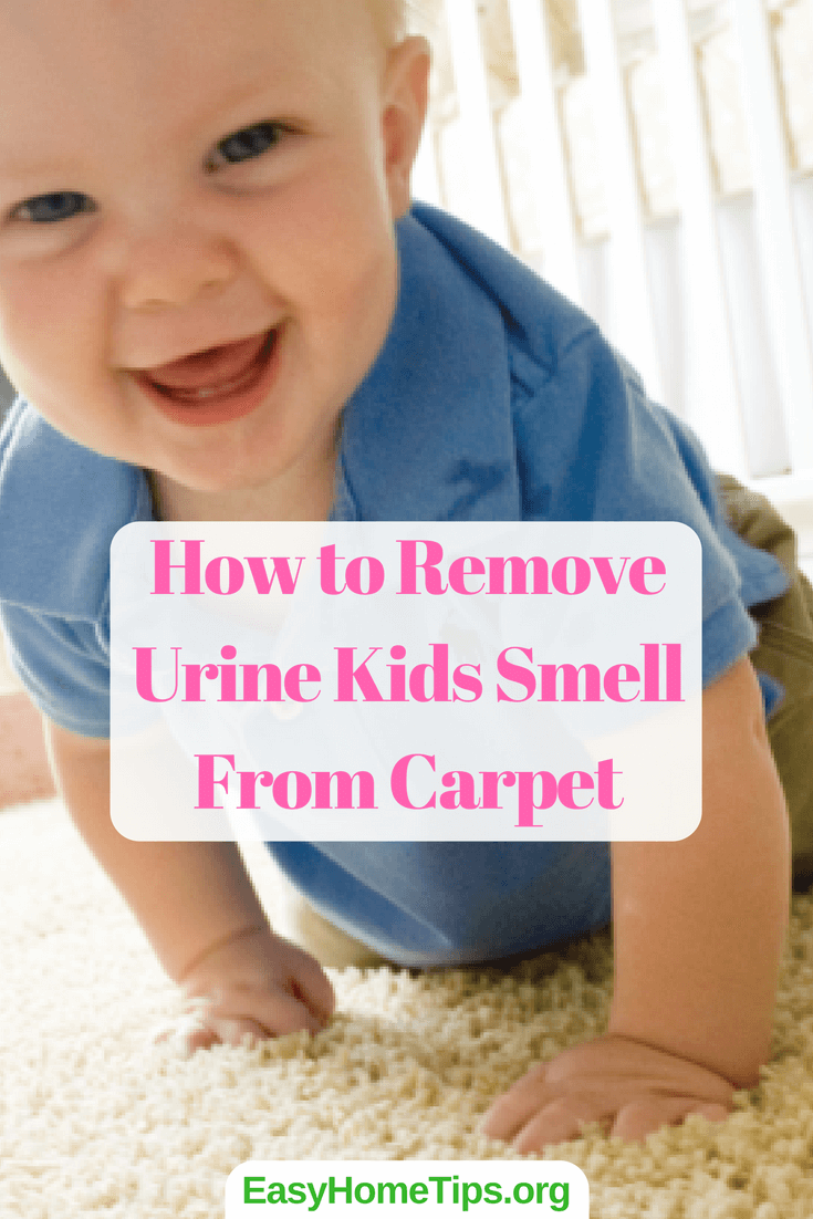How to remove urine smell from carpet