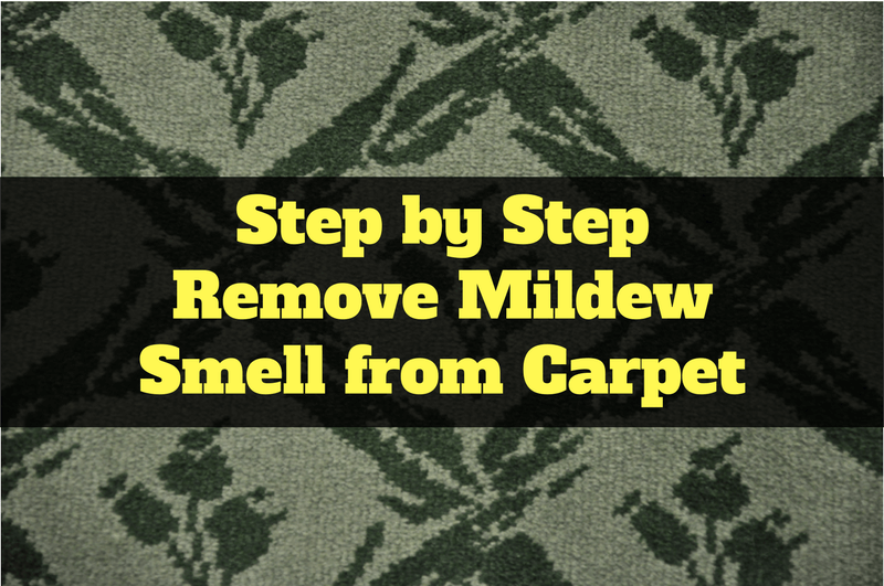 Step by Step Remove Mildew Smell from Carpet