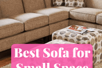 Best Sofa for Small Space Living room