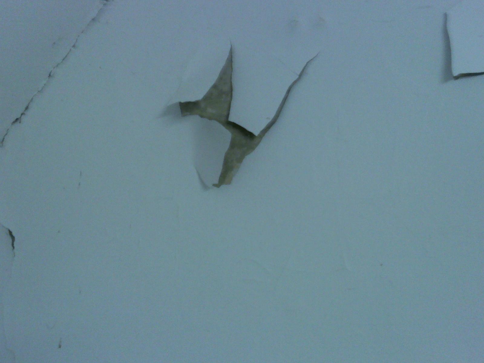 Wall paint peel off