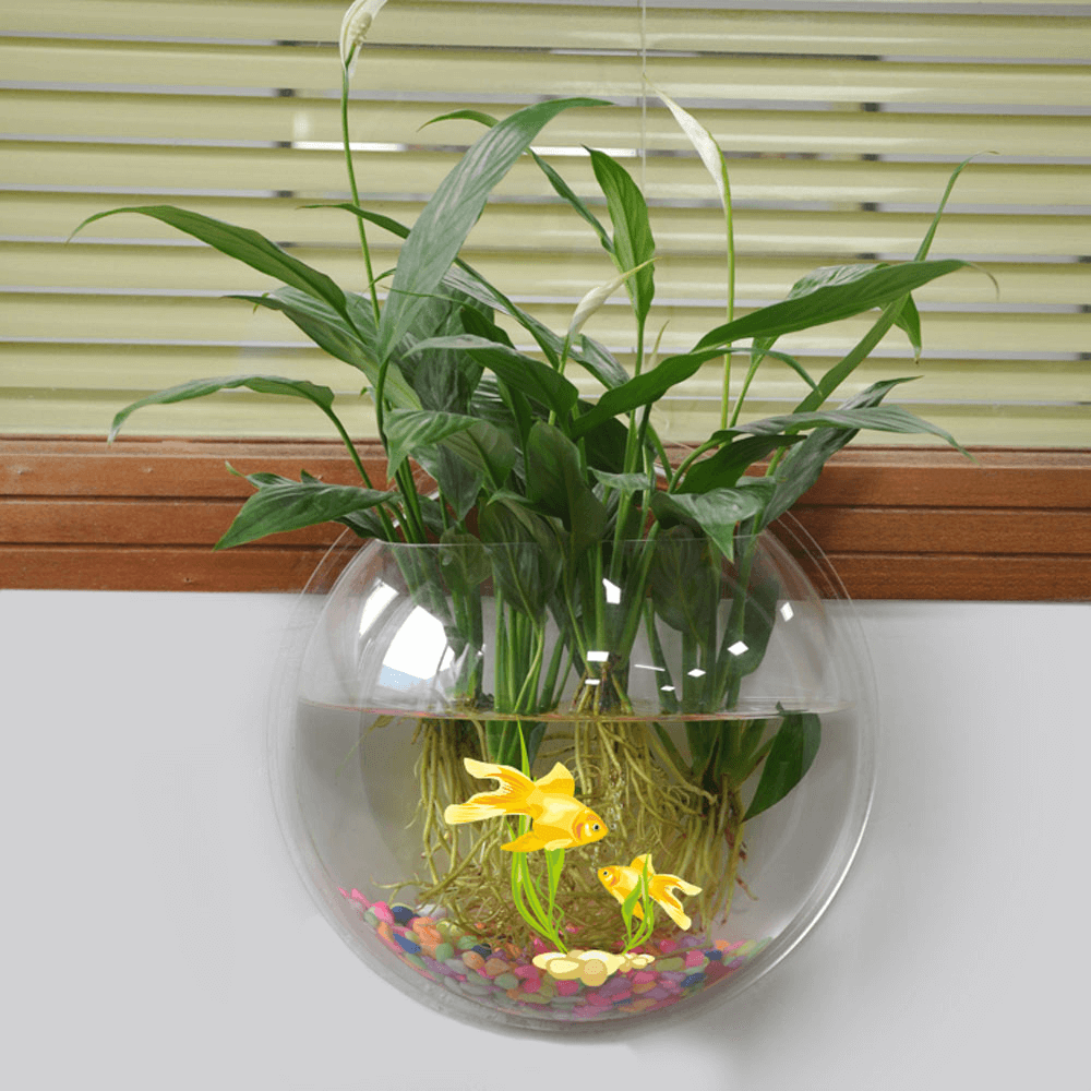 Acrylic fishbowl hanging pot wall mounted