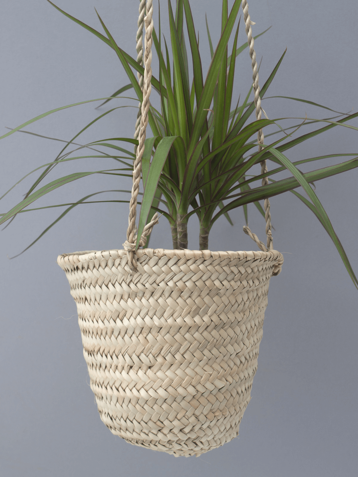 Bohemia basket hanger small pot for indoor or porch