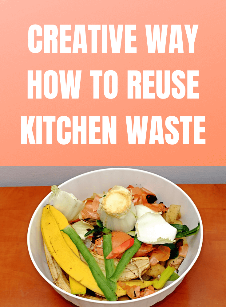 CREATIVE WAY HOW TO REUSE KITCHEN WASTE