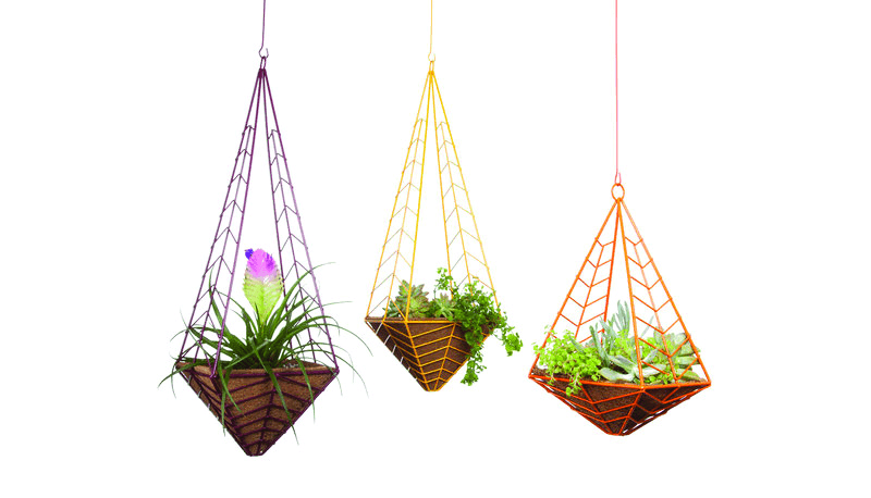 Colorful wire frames hanging palm pot creative for indoor