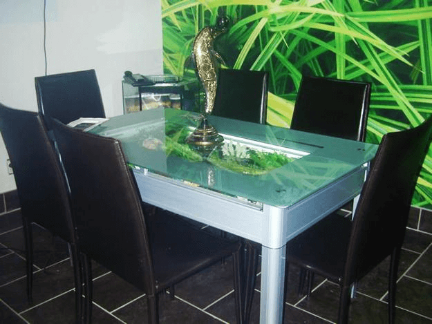 Fish tank aquarium dining table