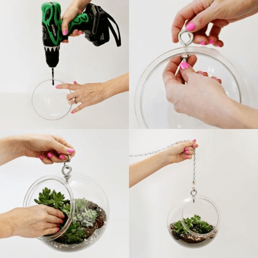 How to create DIY fishbowl hanging pot plant