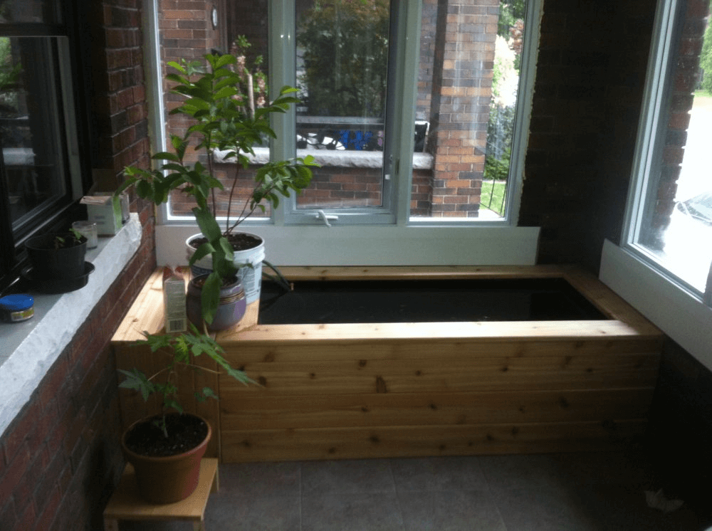 Indoor fish pond ideas for koi with pot plants