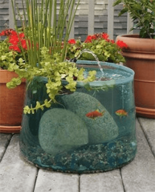 Indoor mini fish pond