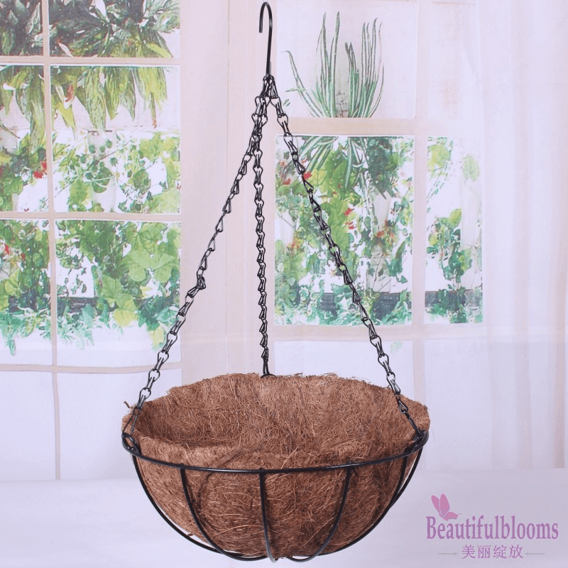 Palm pot hanging plant design ideas for indoor