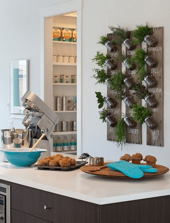 DIY kitchen decor ideas with plant pot