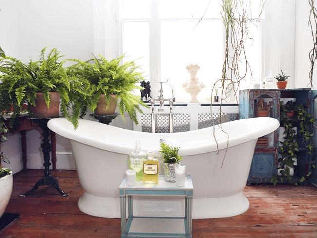 Bath tub plants bathroom ideas