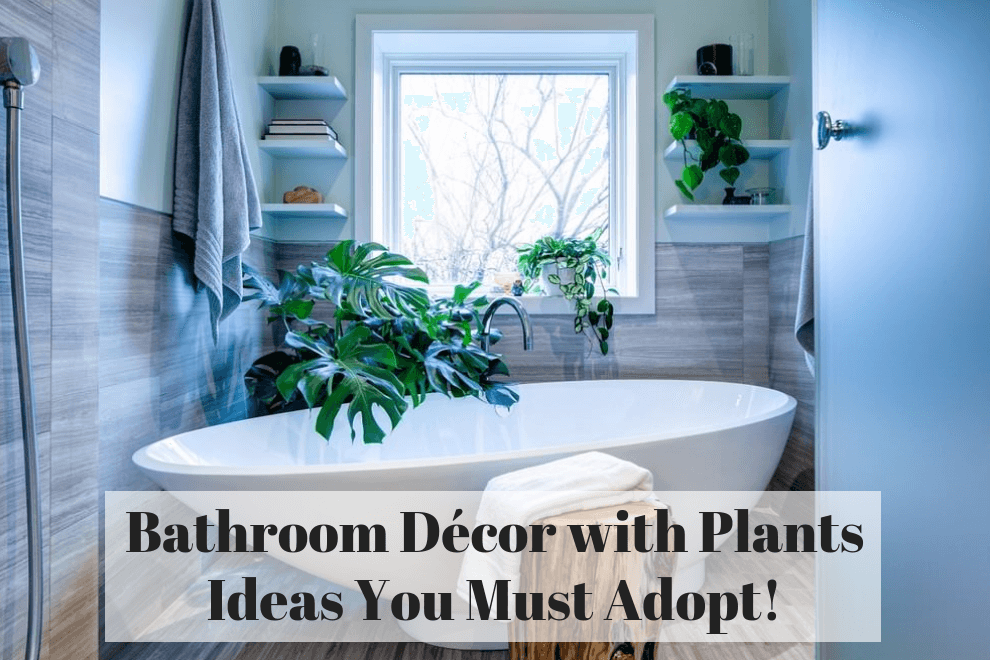 Bathroom Décor With Plants Ideas You Must Adopt
