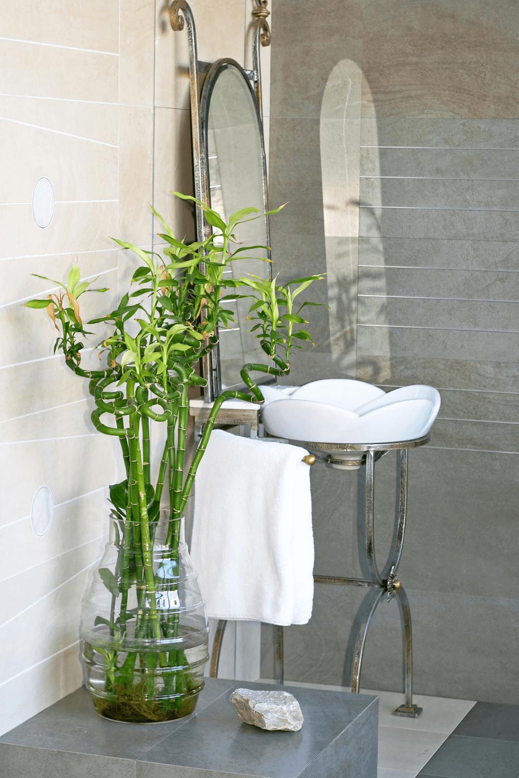 Nice pot for bathroom plants decor ideas