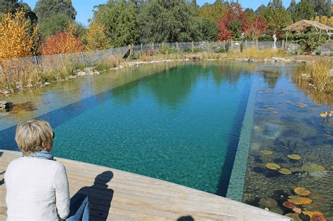 Natural swimming green pool design ideas